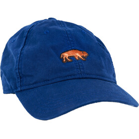 United By Blue Youth Bison Baseball Hat Alpine Green